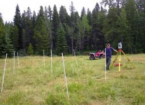 surveyingafield plot
