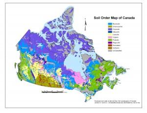 Soil_Order_map