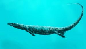 Aigialosaurus