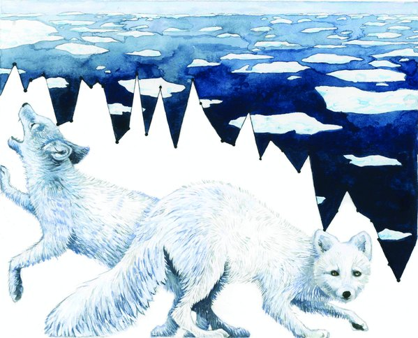 """Arctic Fox and Loss of Sea Ice"", Jill Pelto, U Maine"