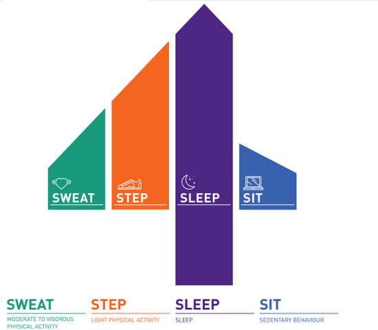 participaction guidelines