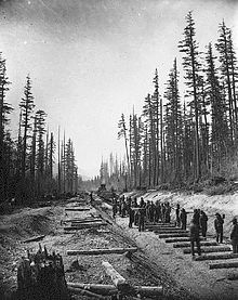 A crew laying tracks in the lower Fraser valley, 1881.