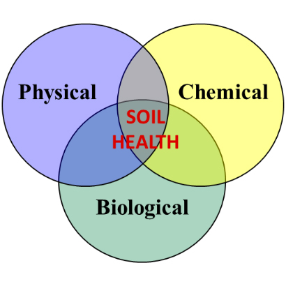 soil-health-processes-diagram