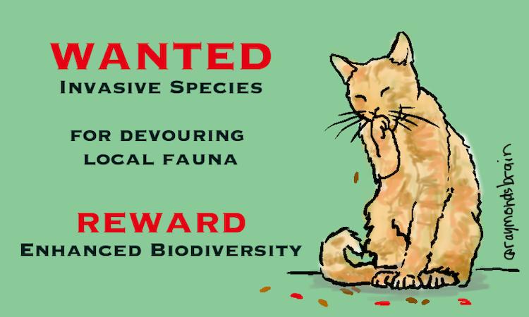 Wanted_invasive app for devouring local fauna_byRaymondNakamura