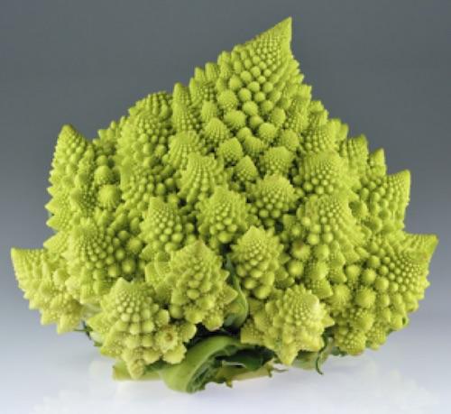 Romanesco broccoli_Wikipedia, CC BY-SA 4.0