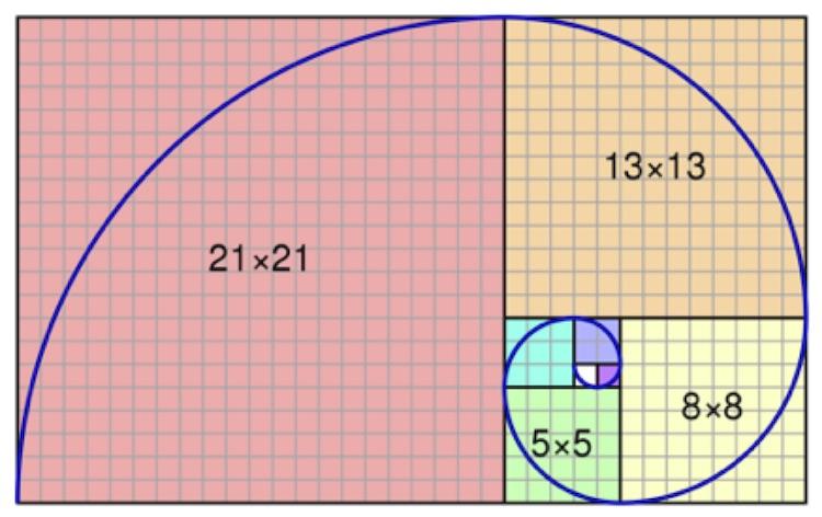 Fibonacci spiral_Wikipedia_CC0